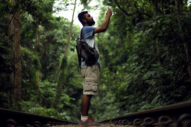 džungle.jpg